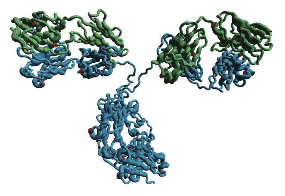 Monoclonal antibody molecule