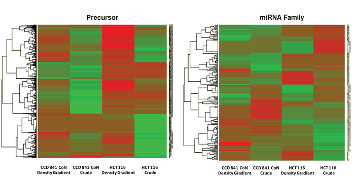 Figure 6. Differential expression heat-map of preparation method within a single cell line. Both precursor miRNAs and mature miRNAs are plotted.