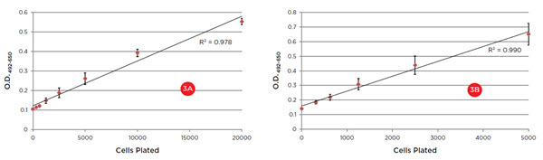 Figure 3. XTT absorbance curves after one-hour (3A) and three-hour (3B) incubations. Excellent linearity (R2 values) indicates the curves provide a reliable standard for unknown samples in a proliferation assay or compound screen. The 20,000 cell data at one hour suggest a plateauing of the curve, indicating a shorter incubation time would be recommended for these cell numbers.