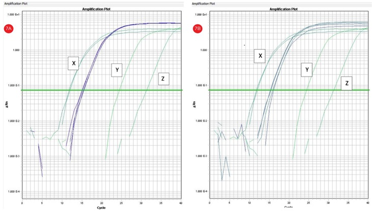 Figure 7. qRT-PCR amplification plots (cycle number vs. florescence) corresponding to automated (a) and manual (b) RNA templates. RNA template concentration 150 ng/uL; X: positive control 200 ng/uL; y: no RT control; z: no template control