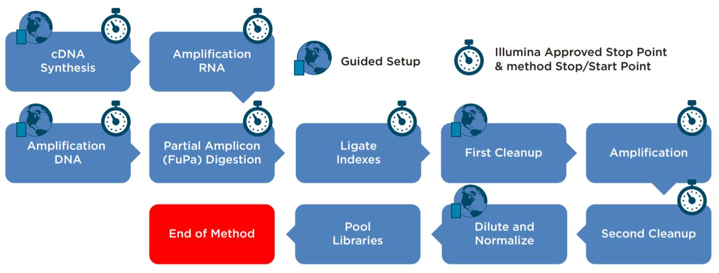 Figure 2. AmpliSeq for Illumina Library Prep Kit automated workflow