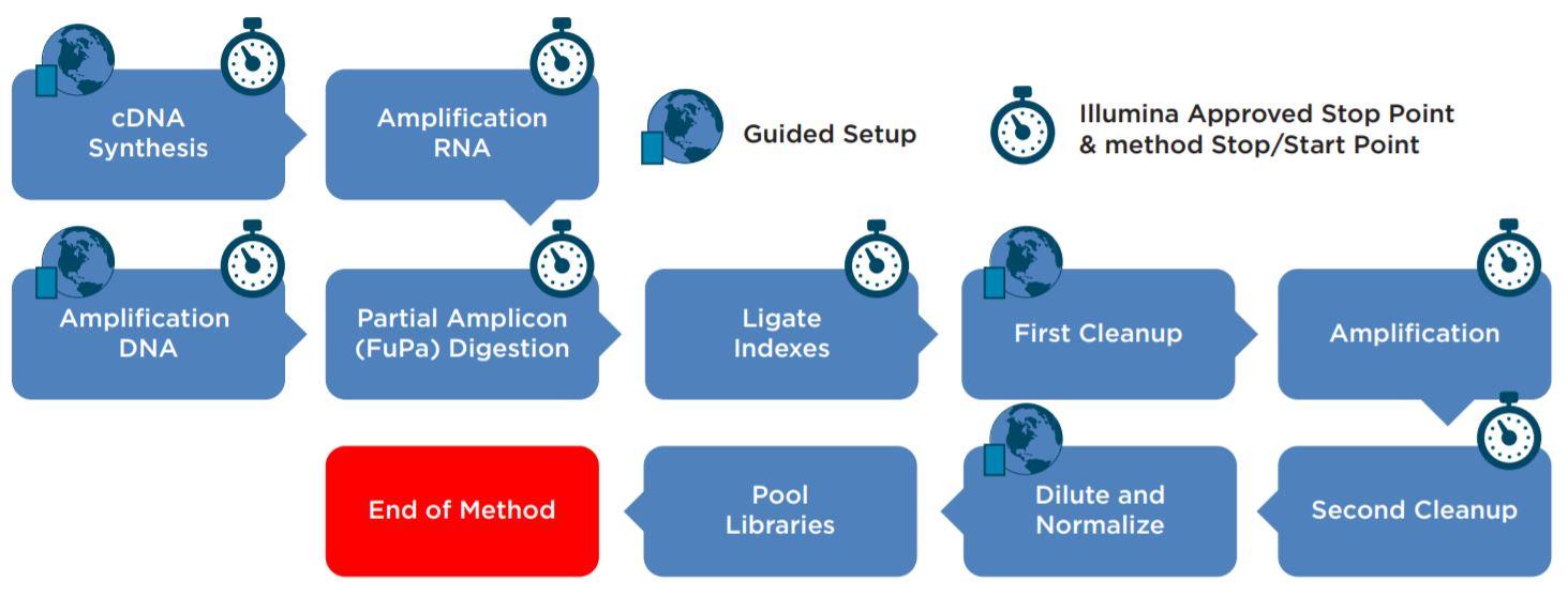 Figure 2. AmpliSeq for Illumina Library Prep Kit automated workflow