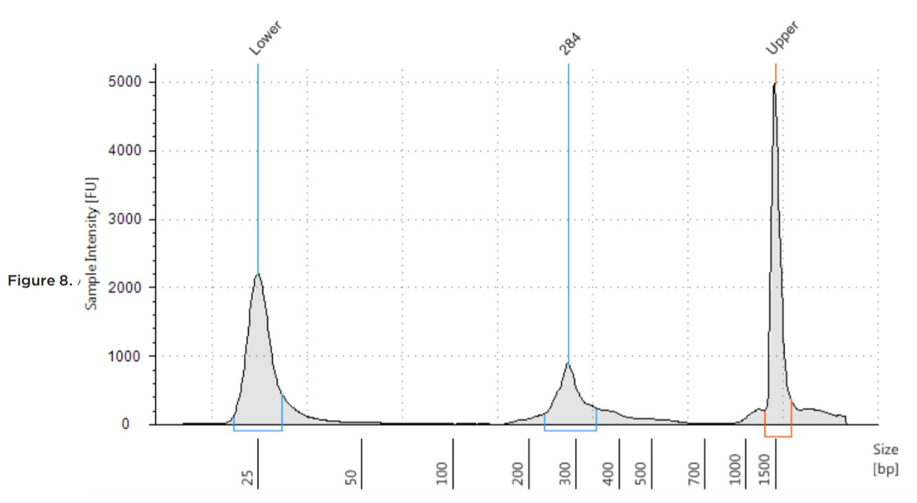 Figure 6. Seracare Fusion RNA Mix v3 (0710-0431) library distribution on D1000 tape run on Agilent TapeStation 2100.
