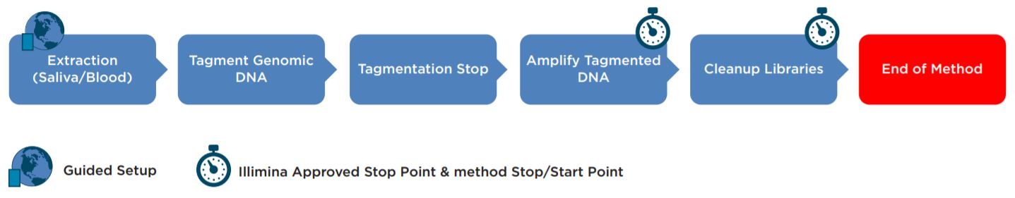 Figure 1. Illumina Nextera DNA Flex Library Prep Kit workflow.