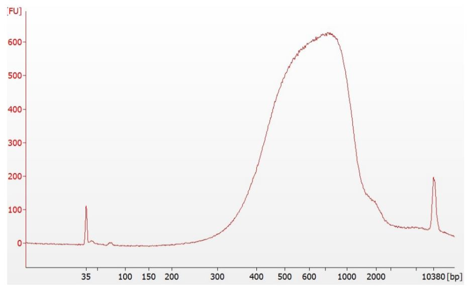 Figure 5. Example of Nextera DNA Flex library distribution on Agilent Technologies 2100 Bioanalyzer High Sensitivity DNA Chip. The 8-plex library median is within expected 650bp +/- 50bp range. The library pool yielded 13.8 ng/uL as measured by Qubit dsDNA HS Assay Kit.