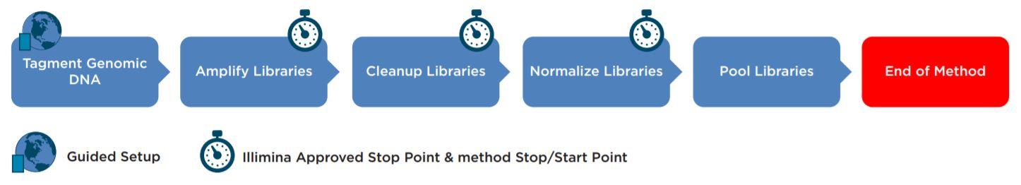 Figure 1. Illumina Nextera XT DNA Library Prep Kit workflow