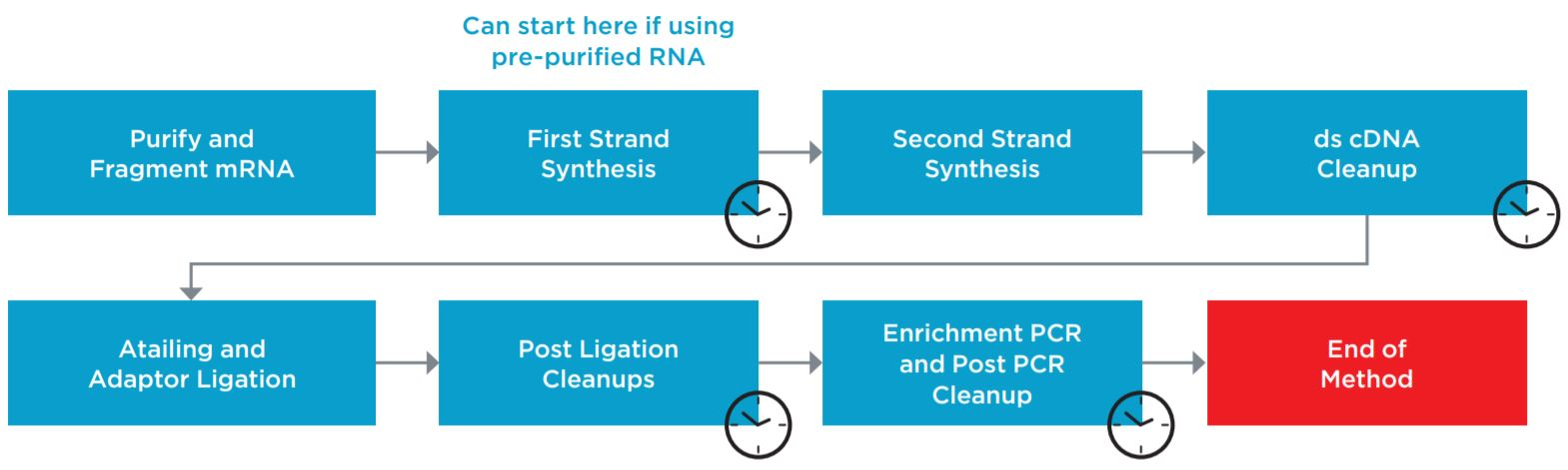Figure 1. Illumina TruSeq® Stranded mRNA Sample Preparation Kit protocol.