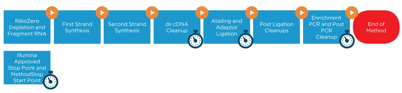 Figure 1. Illumina TruSeq Stranded Total RNA Sample Preparation Kit protocol