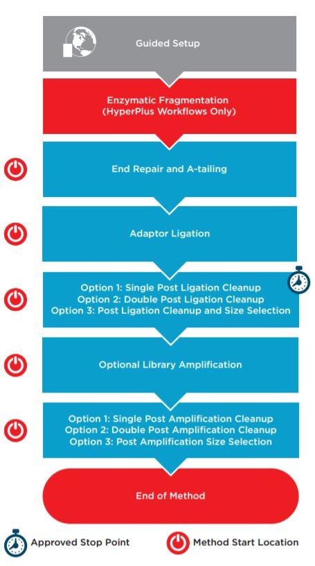 Figure 1. KAPA HyperPrep/HyperPlus automated method workflow.