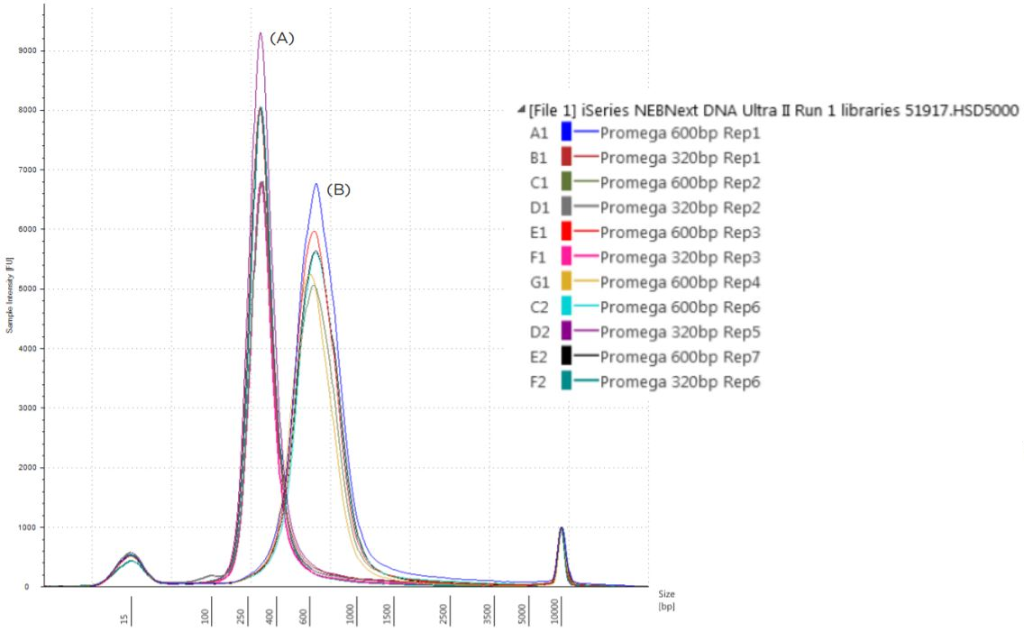 Figure 7. Electropherogram (Sample intensity vs. size in base pairs) of Agilent TapeStation corresponding to 320bp libraries (A) and 600-800 bp (B) libraries.