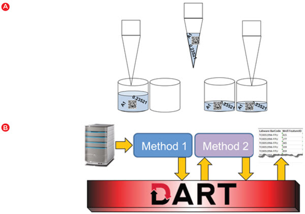 Figure 4. Automated data handling. A) Biomek software automatically transfers data from source to destination when a liquid handling step is executed. B) DART software provides a database that can be used to store data between runs and enables data to be accessed in a later run or for generating reports.