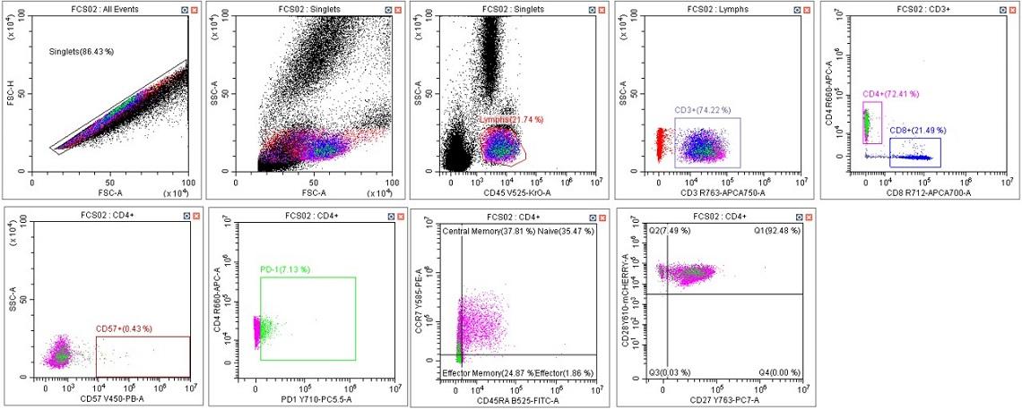 CytoFLEX Gain Independent Compensation Immunophenotyping Panel in Scenario 3