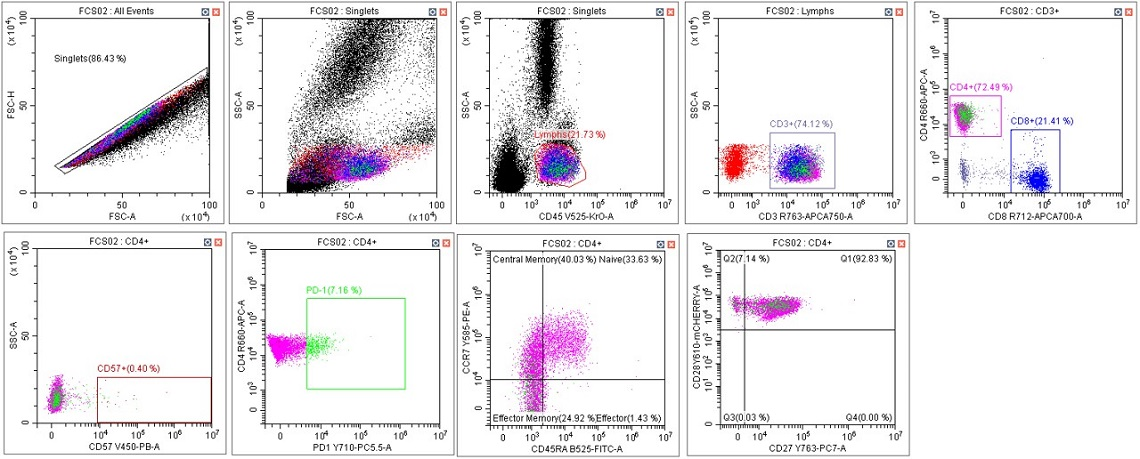 CytoFLEX Gain Independent Compensation Immunophenotyping Panel in Scenario 4 with gates adjusted