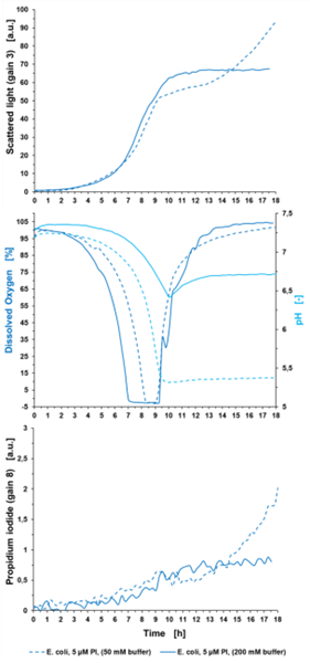 Figure 5: Determination of stressed cells using PI measurement in the BioLector® Pro