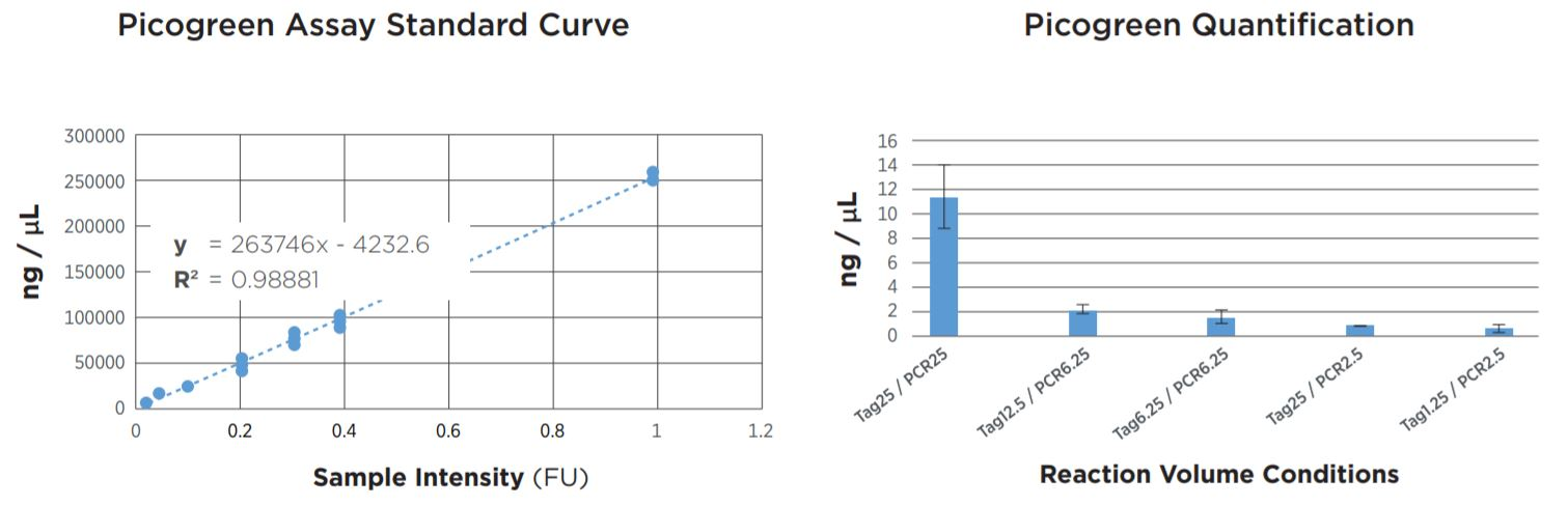 FIGURE 2: Picogreen quantification results. Standard curve was generated using lambda DNA from 25pg/µL to 1µg/µL. Results agree with TapeStation fragment analysis. Yield dropoff is expected due to reduced PCR volume, and is reproducible across technical replicates. Tag25/PCR25 was performed manually and shows greater variability