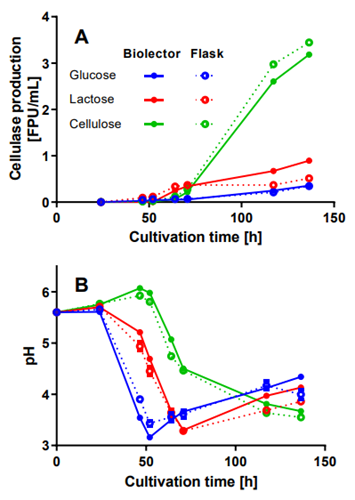 Figure 1: Comparison BioLector® and traditional shake flask cultivations of T. reesei RUT-C30 RFP1 with different carbon sources.