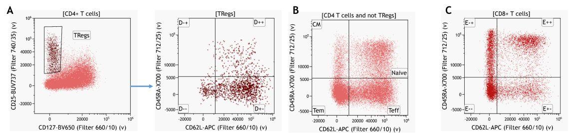 Основанная на знаниях идентификация регуляторных Т-клеток и их субпопуляций