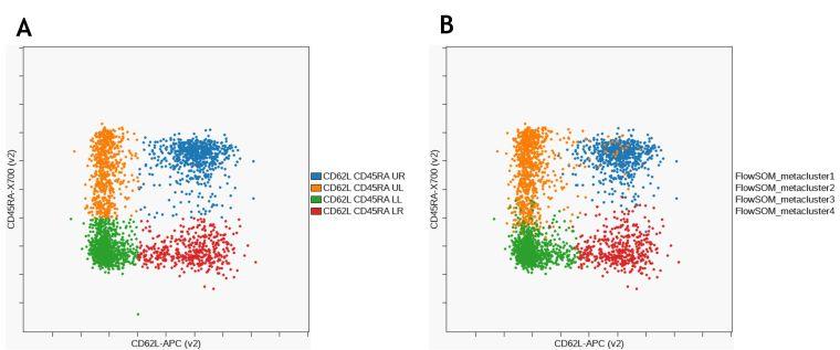 Сравнение субпопуляций Т-клеток памяти в популяциях CD8+ Т-клеток, идентифицированных с помощью ручного гейтирования и FlowSOM