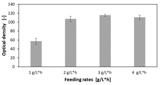 Figure 13 Comparison of the optical densities of C. glutamicum at different linear feed rates with an increase of 0.1 µL/h