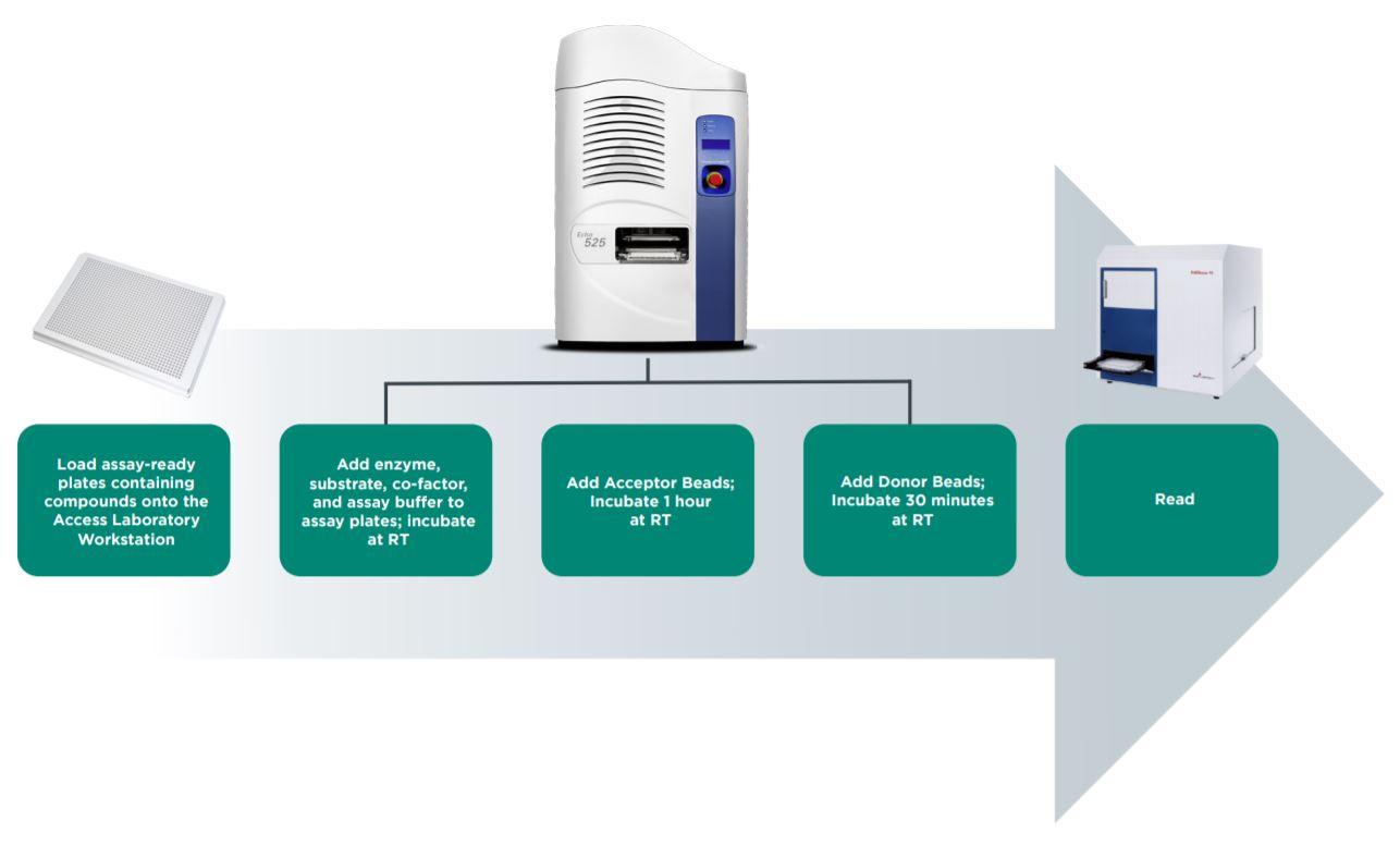 Figure 4 Automated workflow for AlphaLISA epigenetic assay