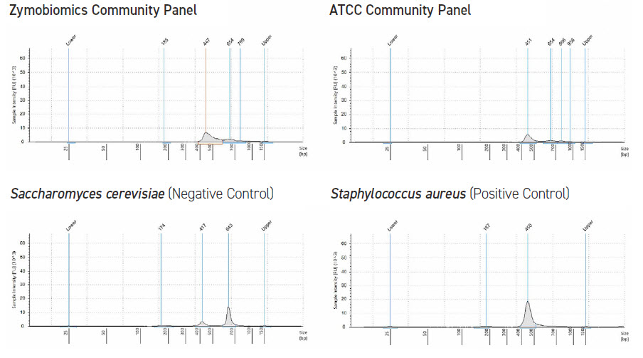 Electropherograms of 16S rRNA amplicon sequencing samples