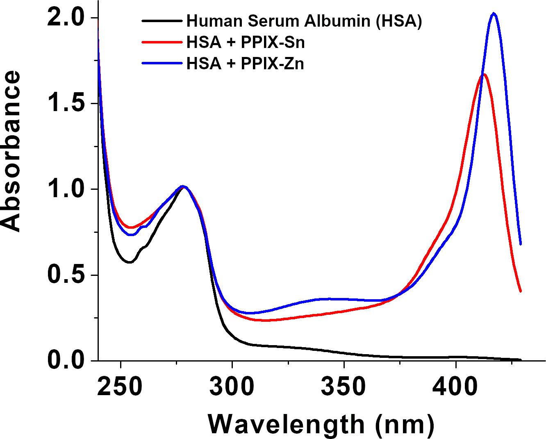 Figura1. Espectros de absorbancia del suero humano (HSA), HSA+PPIX-Sn y HSA+PPIX-Zn