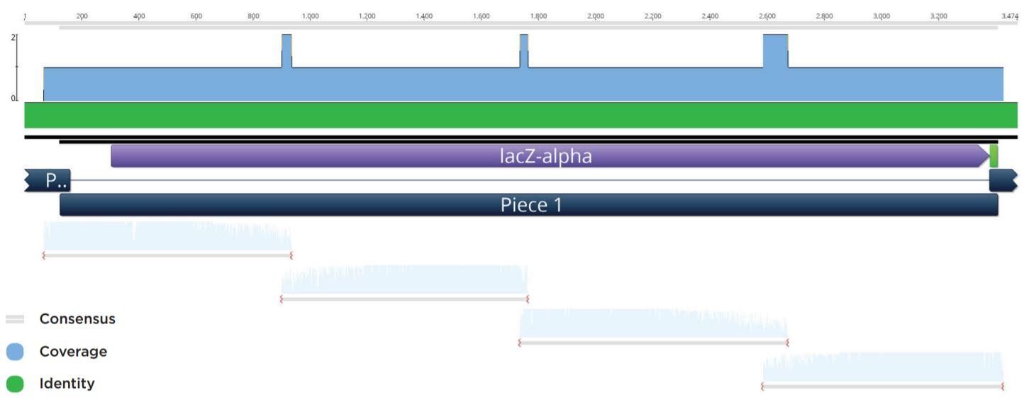 fig4 Nanoliter Scale DNA Assembly Utilizing the NEBuilder HiFi Cloning Kit with the Echo 525 Liquid Handler