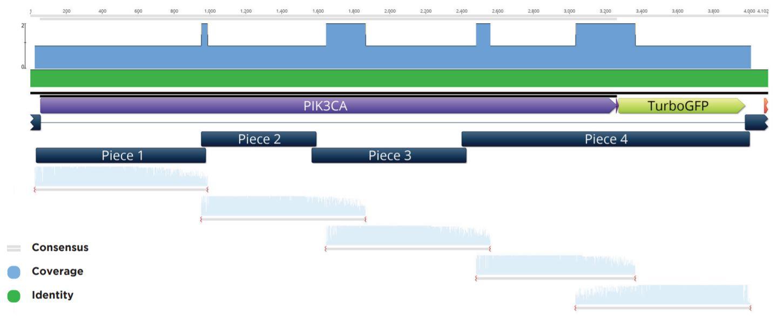 fig8 Nanoliter Scale DNA Assembly Utilizing the NEBuilder HiFi Cloning Kit with the Echo 525 Liquid Handler