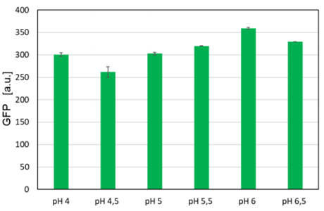 Figure 3: Maximum GFP values reached in H. polymorpha FMD-GFP cultivations at different pH conditions. Biological triplicates were cultivated at 1200 rpm in a microfluidic FlowerPlate® with a two-sided pH control adjusted to different pH-setpoints between 4 and 6.5.