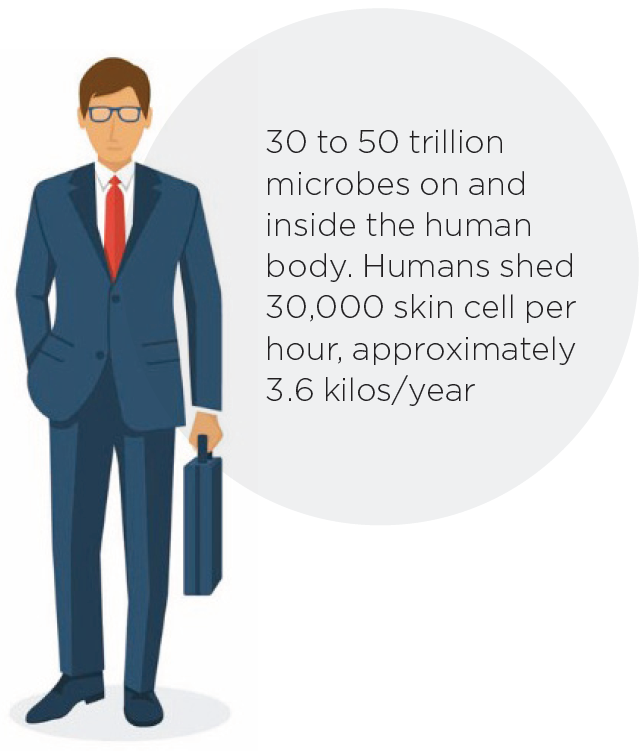 30 to 50 trillion microbes on and inside the human body. Humans shed 30,000 skin cell per hour, approximately 3.6 kilos/year