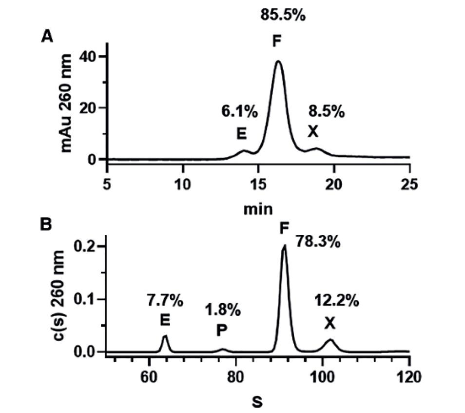 Assessing the quality of adeno-associated virus gene