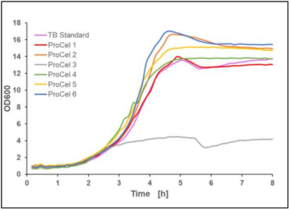 Figure 6: Recalculated optical density of E.coli BL21(DE3) pET-28a(+) EcFbFP in different TB-like media, mean value of two biological replicates, 37 °C, 1400 rpm, 35 % oxygen in headspace, 800 µL filling volume