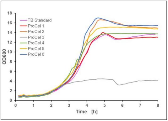 Figure 6: Recalculated optical density of E.coli BL21(DE3) pET-28a(+) EcFbFP in different TB-like media, mean value of two biological replicates, 37 °C, 1400 rpm, 35 % oxygen in headspace, 800 µL filling volume