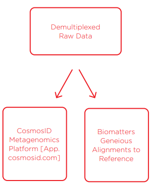 Data Analysis and Bioinformatics