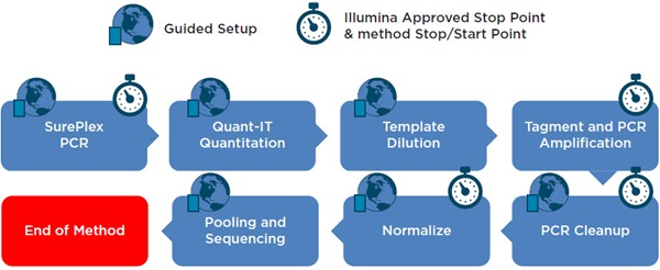 Figure 2. SurePlex PCR and VeriSeq Library Prep Kit workflow