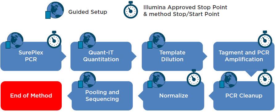 Figure 2. SurePlex PCR and VeriSeq Library Prep Kit workflow