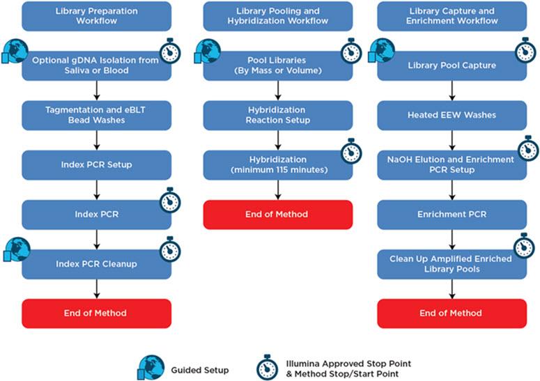 Figure 2. Illumina Nextera Flex for Enrichment automation method workflow.