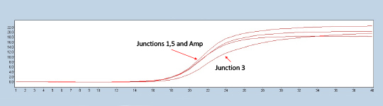 Figure 2. Lightcycler 480 trace of a representative construct testing positive for all three experimental junctions in comparison to the ampicillin marker control.