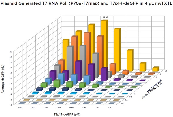 FIGURE 8: Multi-variable titration of the T7p14-deGFP and P70a-T7rnap plasmids into 4 μL myTXTL reactions after 7.5 h of incubation. Readings were taken on a BMG Labtech PHERAstar FS (λEx = 485 nm, λEm = 520 nm). Each point was done in quadruplicate and the plot had an average percent CV of 14.51%. Peak production was found to be at 1250 pM T7p14-deGFP and 12 pM P70a-T7rnap with an average deGFP concentration of 18.95 nM.