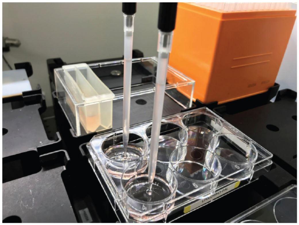 Genomics Cell Line Development Medium Automation Figure 2