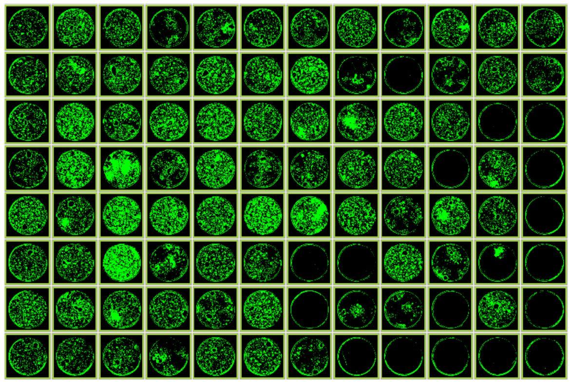 Genomics Cell Line Development Picking Efficiency Figure 4