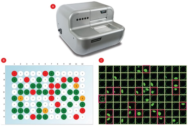 Automation Application Note Automating Cell Line Development Figure 4