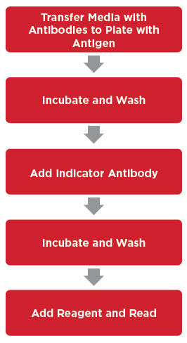 Typical Sample Preparation for Absorbance, Fluorescence or Luminescence Assays