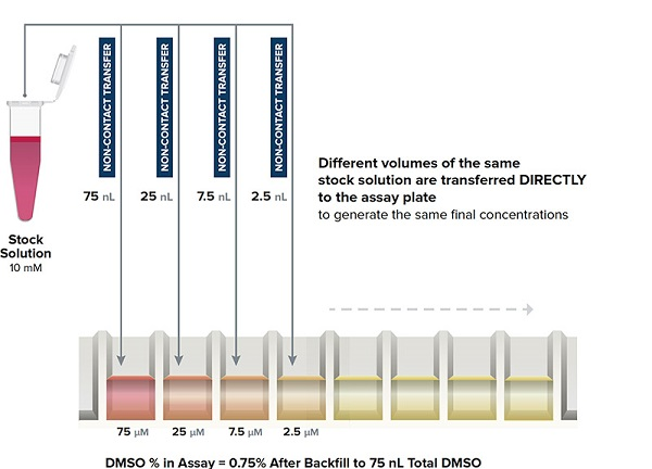 Echo Direct Dilution