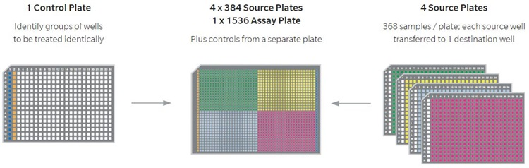 Automation Software Echo Plate Reformat Simplified PCR Workflow Plates