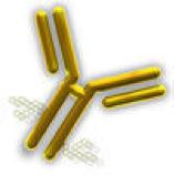 Concetto di biosicurezza per la massima sicurezza biologica