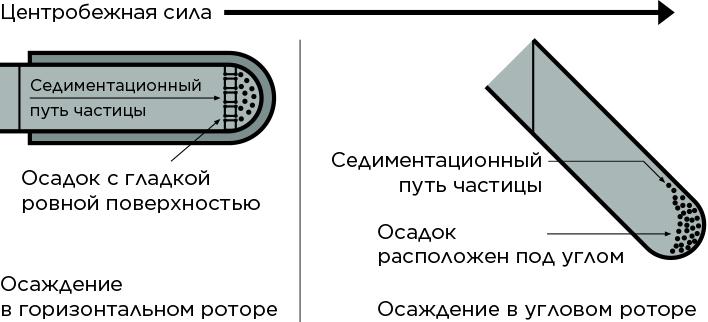 Седиментационный путь частицы в бакетном и угловом роторе