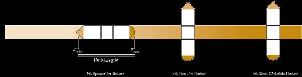 Swinging Bucket Rotor Pathlength