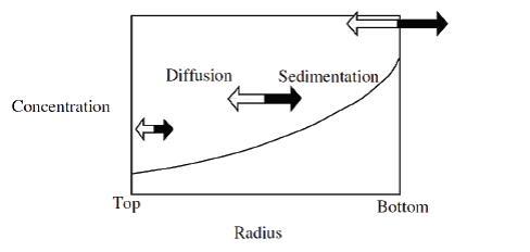 Sedimentationsgleichgewicht Bild AUZ-Formel