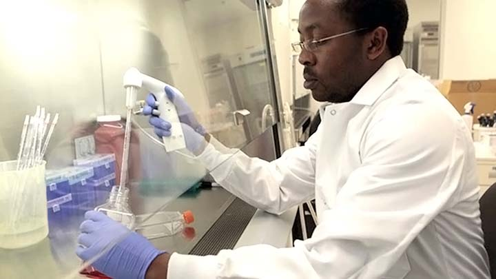 Man pipetting in biosafety hood